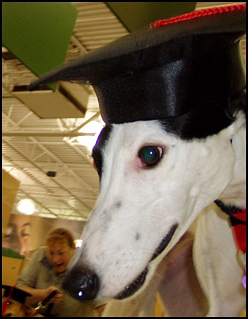 Phoebe Graduates