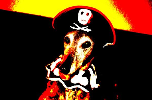 Joey - Halloween 09
